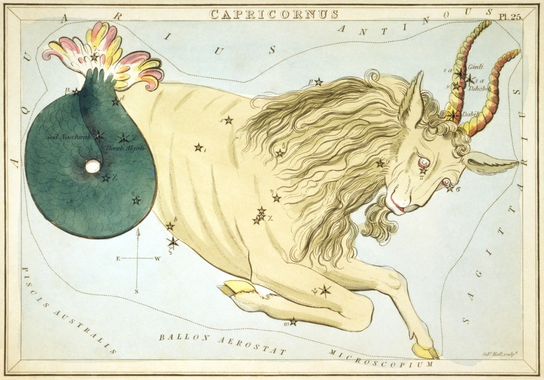 Capricronus Constellation